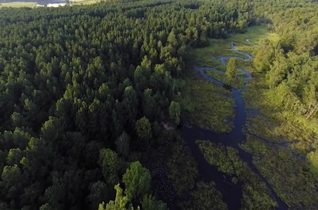 aerial videos of williamsburg va