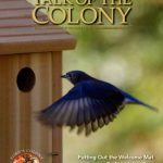 Ford's Colony newsletter for March 2017